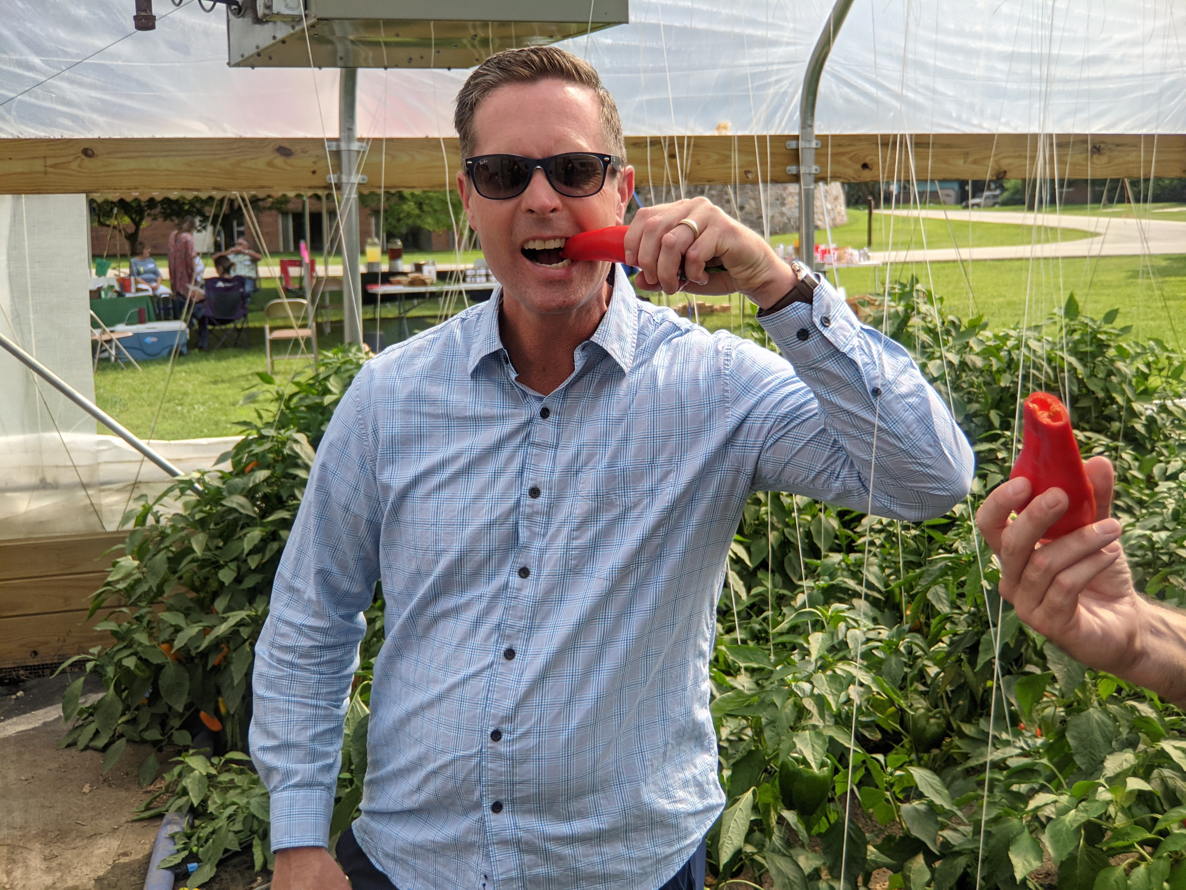 Congressman Rep. Rodney Davis take a big bit out of a red sweet pepper while inside the hoop house growing hundreds more! In sunglasses and smiling at the camera as he goes in for another bite!