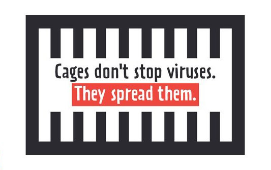Cages don't stop viruses. They spread them.