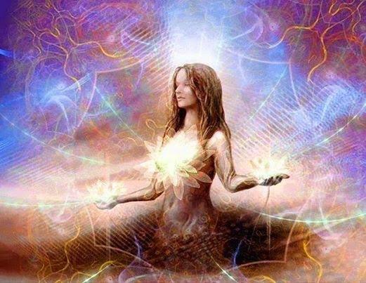 medita lotus