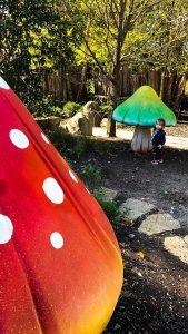 Highfield Discovery Garden