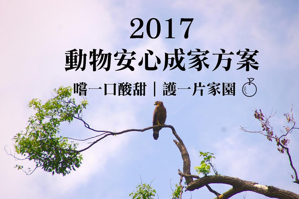2017動物安心成家方案