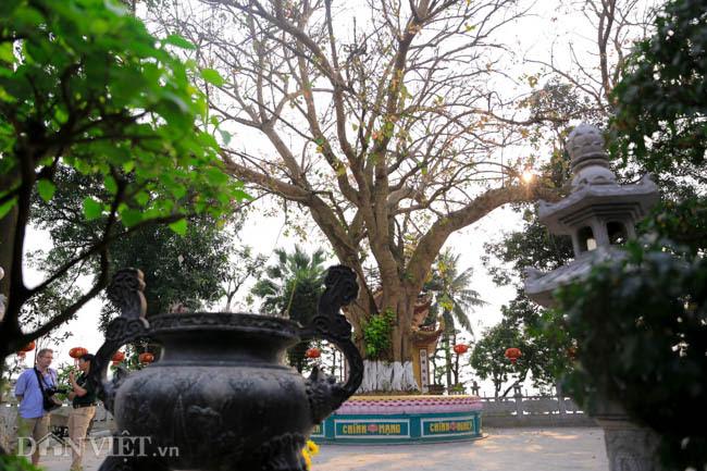 Vẻ cổ kính, bình yên của ngôi chùa đẹp nhất thế giới tại Việt Nam - 4