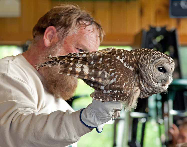 Joe Rogers with a barred owl during one of his presentations.