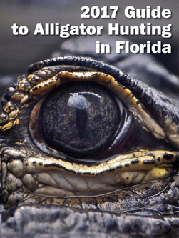Alligator Hunt Guide