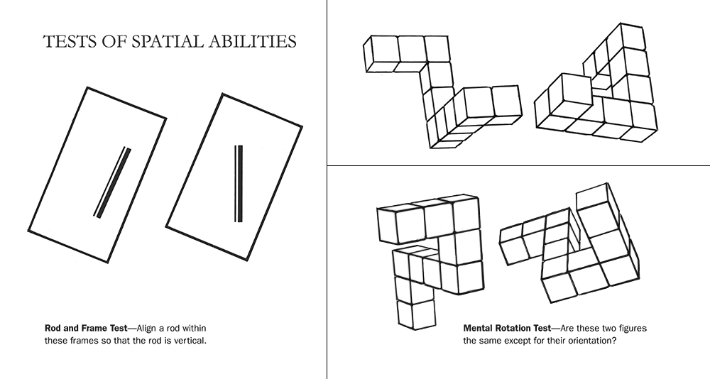Test of Spatial Abilities