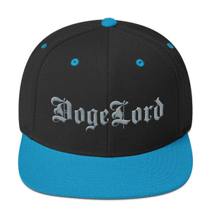 DogeLord Gray Embroidered Snapback Hat\ 100xauto