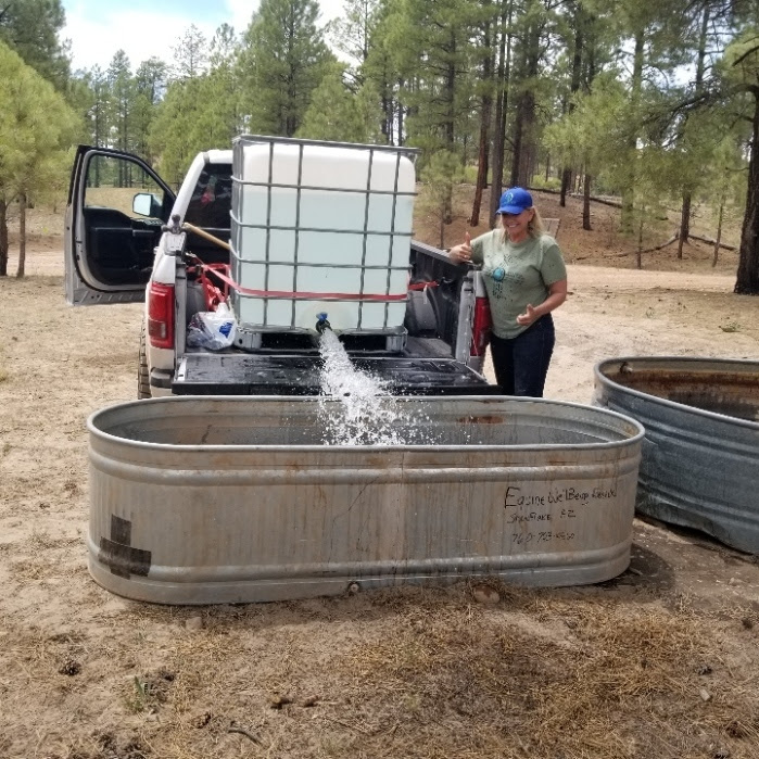 20210609 Jineane Ford helping fill troughs