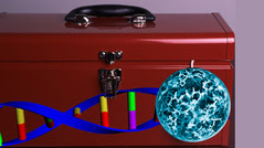a toolbox with DNA and a cancer cell