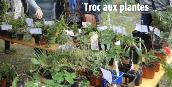 troc-aux-plantes-2