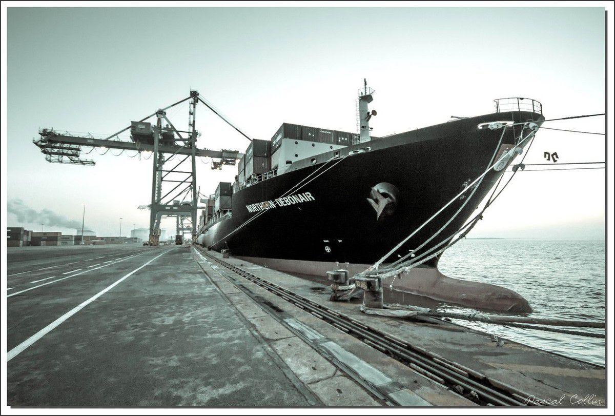 Infos - les Ports, et Infrastuctures maritimes Ob_e5b0bf_northern-debonair-t8964
