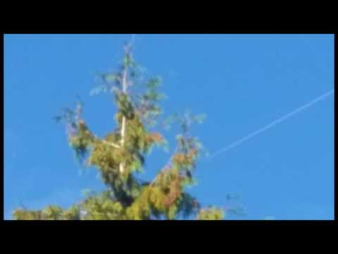 UFO News ~ UFO Seen At ISS Glistening In The Sun and MORE Hqdefault