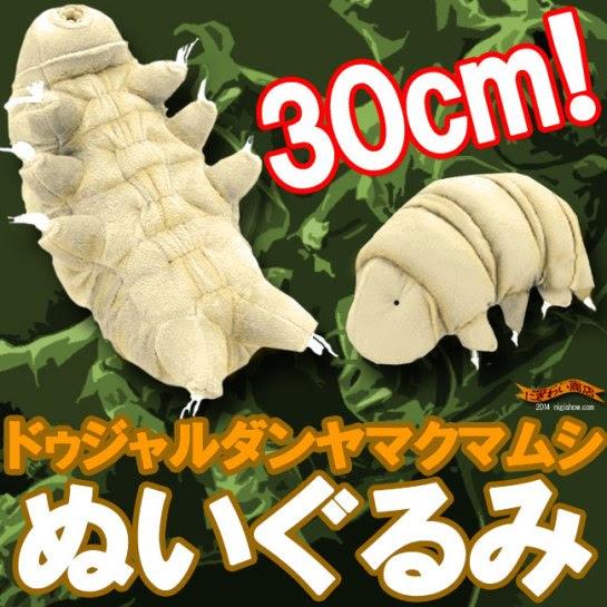 keitaistrap_cabinet_nigi2014_yamakumamushi-001
