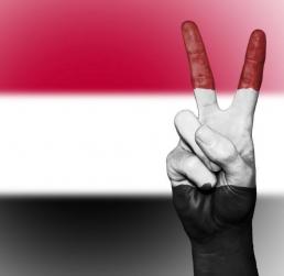 Link to Letter urging end to U.S. support for Saudi-led war on Yemen