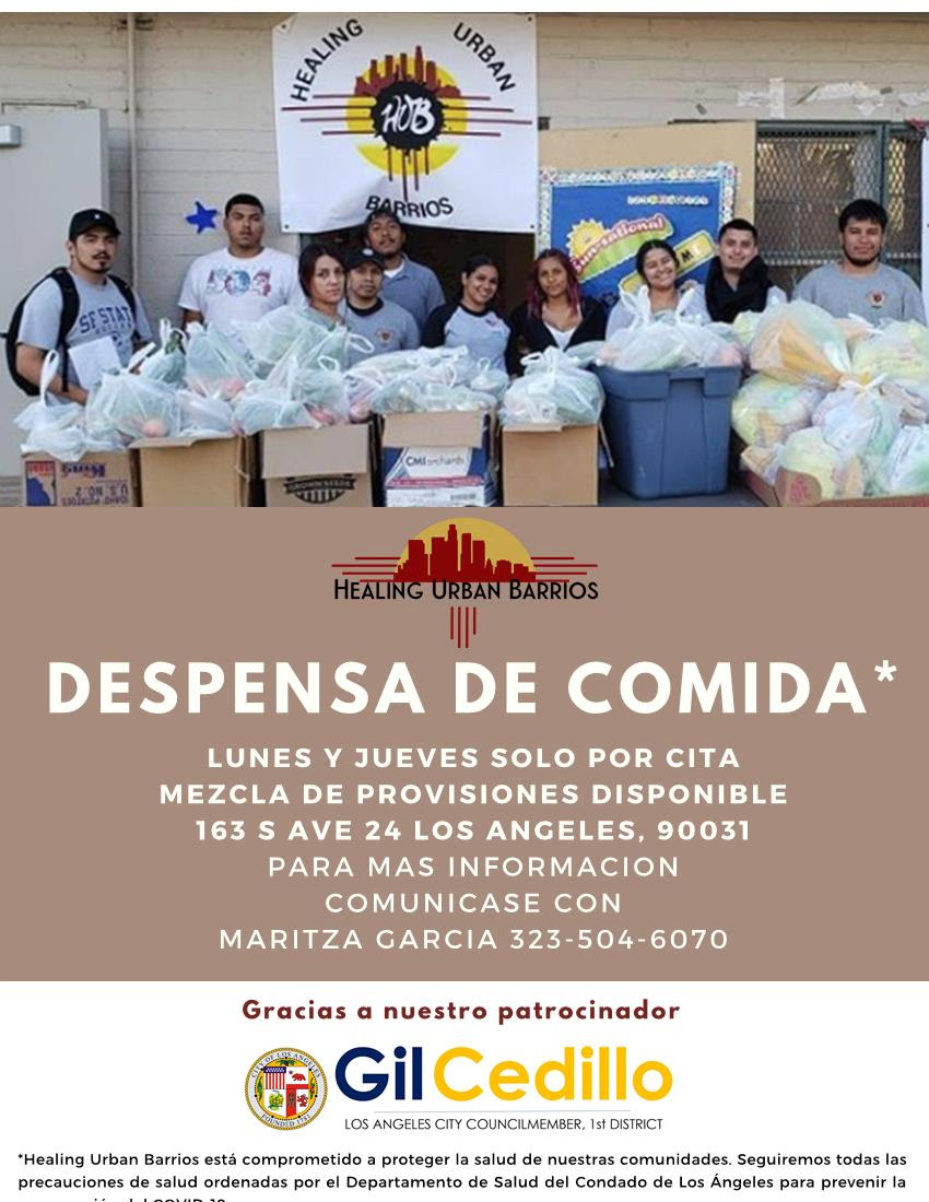 Healing Urban Barrios Food Giveaway Spanish