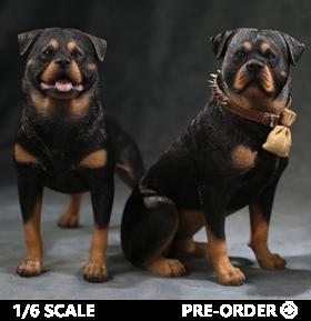 1/6 scale animals