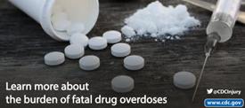 Fatal Overdose Burden