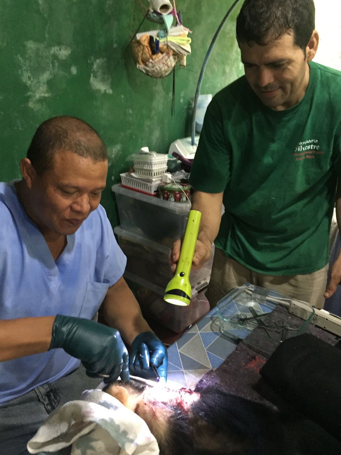 Dr. Andres Tello Atencio