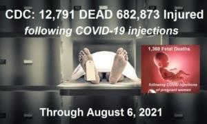 CDC/VAERS Stats thru 8/06/21 August-6-2021-VAERS-deaths-768x461-1-300x180