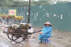 Image result for nguoi dan ba ban hang rong bi cong an xuc len xe