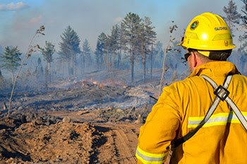 DNR firefighter Pete Glover overlooks a 100-acre fire in Marquette County.