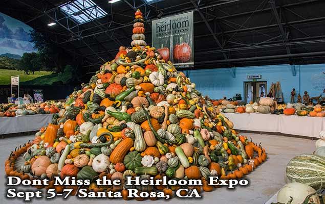 Heriloom-Expo-