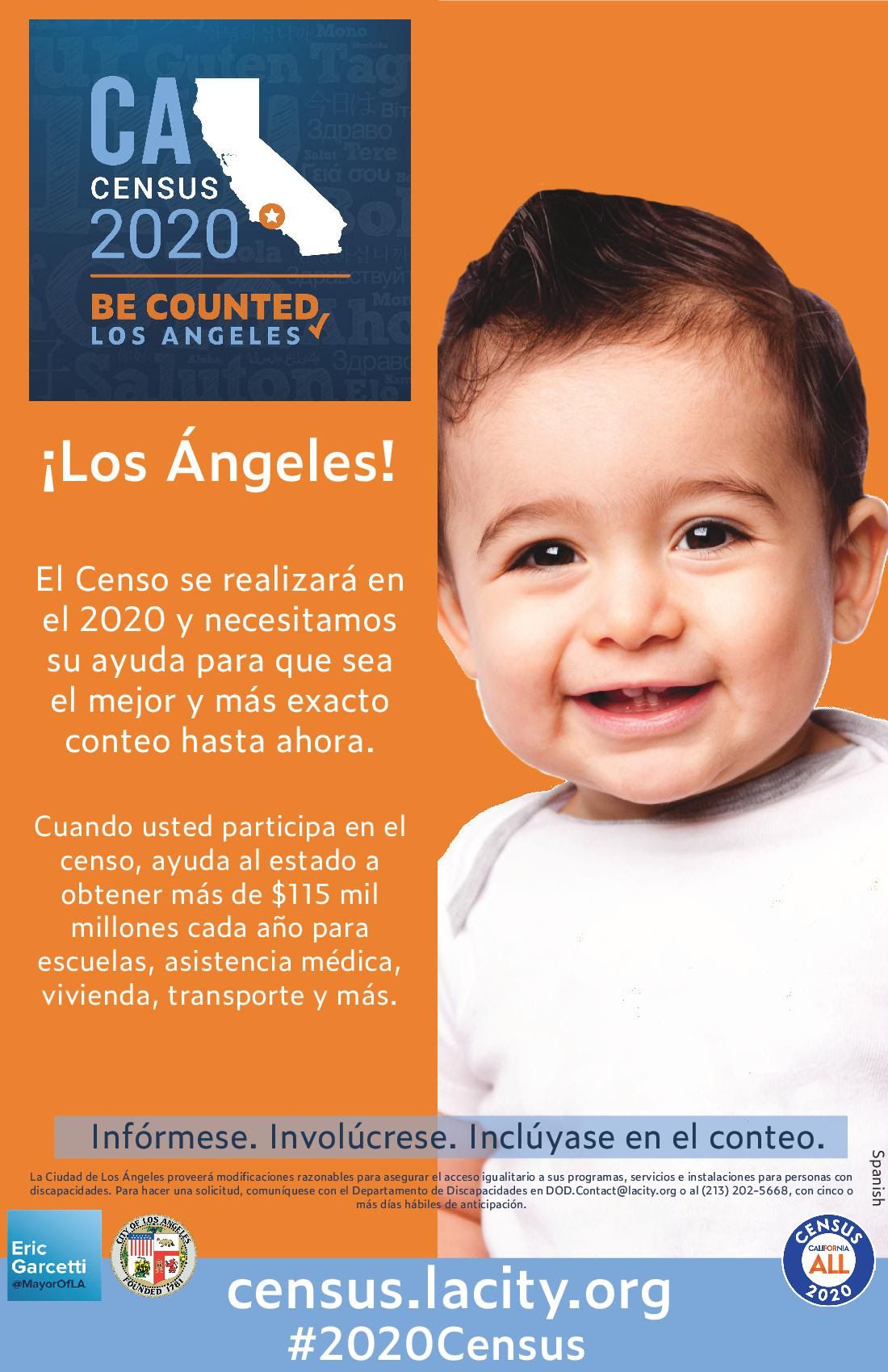Census Info Flyer Spanish