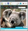 Logiciel du jour : MyImgur Tinypic_uploader