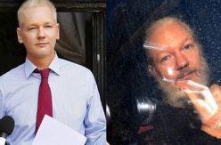 Despotismo judicial contra Julian Assange