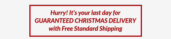 Hurry! It's your last day for GUARANTEED CHRISTMAS DELIVERY with Free Standard Shipping