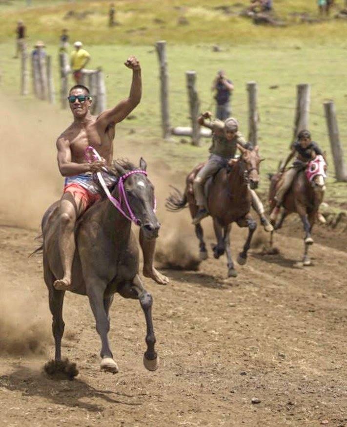 carrera-caballos-rapa-nui