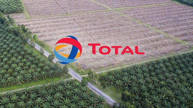Logo de Total avec en arrière-plan des plantations de palmiers à huile en Indonésie