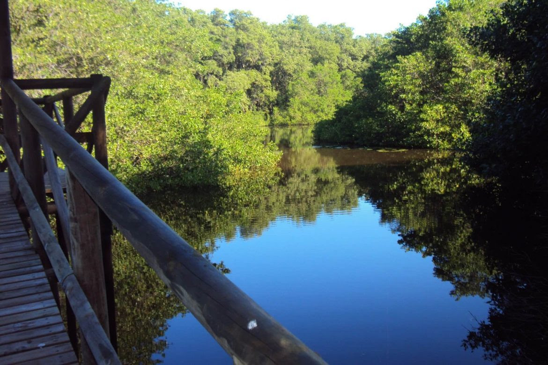 via-parque-salamanca-conservacion-agua-sarmiento-duque-uninorte-1170x780