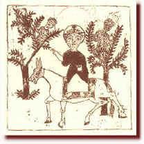 Origini dell'ulivo