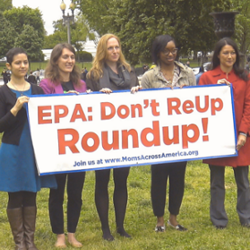 activists holding EPA Do not Re-Up Roundup! banner