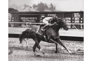 Strike the Gold wins the 1991 Blue Grass Stakes at Keeneland