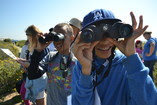 Students learn about local birds by playing a familiar game on the San Diego Bay National Wildlife Refuge