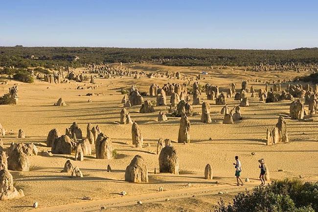 """Các tảng đá quái dị: Nằm trên sa mạc Nambung Tây Úc là nơi """"Pinnacles"""", một bộ sưu tập lớn các khối đá vôi lớn, kỳ lạ nằm trên bãi cát vàng. Nếu đủ can đảm đi bộ xuyên qua toàn bộ Sa mạc Pinnacles bạn sẽ thấy vào lúc hoàng hôn, những tảng đá vôi đổ bóng xuống tạo nên cảnh quan tuyệt đẹp mà không thể nhìn thấy ở bất cứ nơi nào khác trên thế giới."""