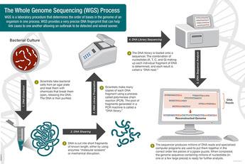 WGS Process