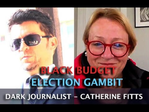 CATHERINE AUSTIN FITTS - BLACK BUDGET ELECTION GAMBIT! DARK JOURNALIST  Hqdefault