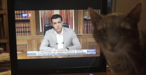 Un gato junto a un televisor que emite el mensaje televisado del primer  ministro griego, Alexis Tsipras, anunciando el cierre de los bancos y controles de capital.. EFE/EPA/ORESTIS PANAGIOTOU