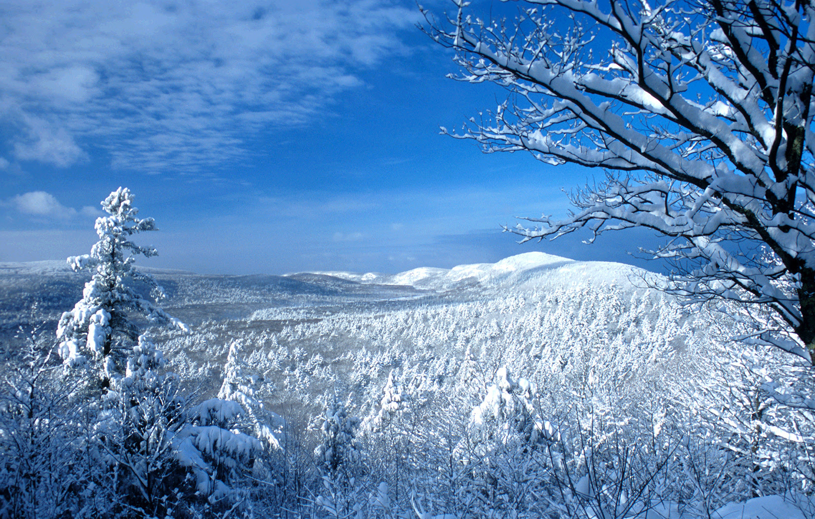 A stunning winter photo shows the spectacular beauty of Porcupine Mountains Wilderness State Park.