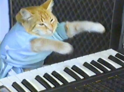 File:KEYBOARD CAT.png