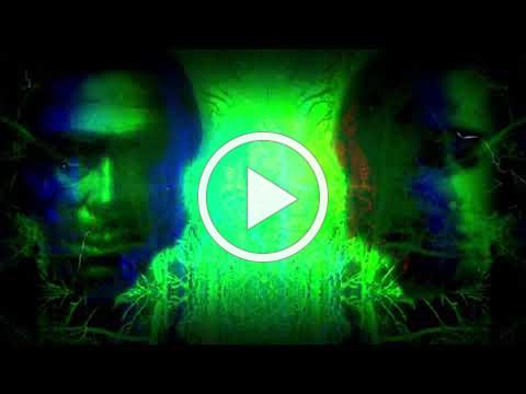 "GRIDFAILURE featuring MAC GOLLEHON ""Roaming Blackouts"" (visualizer)"