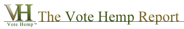 VH Report header