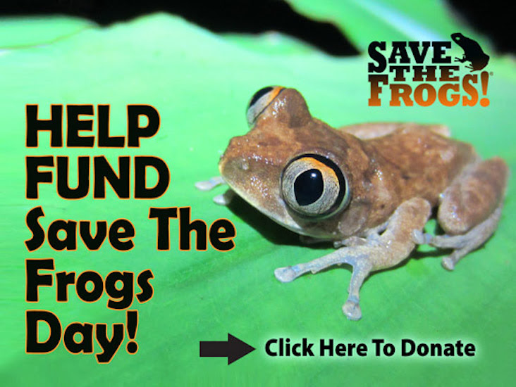 https://donatenow.networkforgood.org/savethefrogs