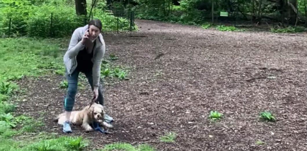 Amy Cooper, surnommée«Karen de Central Park». | Capture d'écran via Christian Cooper / Facebook