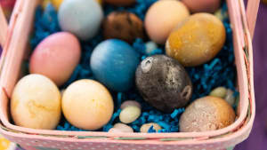 Easter creates tons of plastic trash–here's how to celebrate sustainably