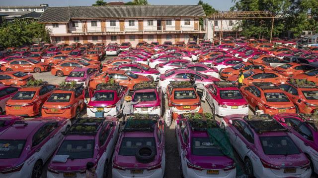 Na Tailândia, táxis parados por força da pandemia são agora hortas