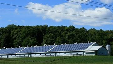China apela el informe del Grupo Especial que examinó los derechos de los Estados Unidos sobre las células fotovoltaicas