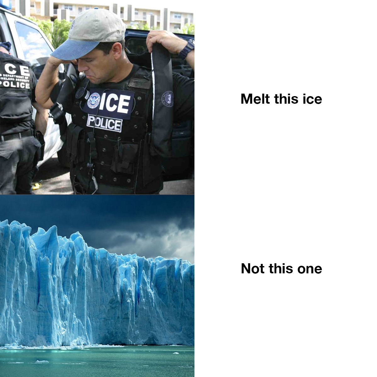 """picture with an ICE agent with the words """"melt this ice"""" and an image of a glacier with the words """"not this one"""" written"""